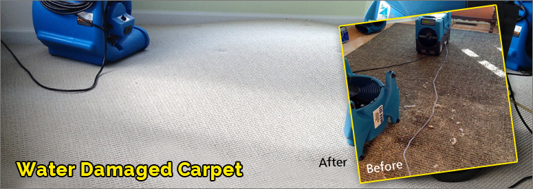 Water Damage Carpet Thousand Oaks